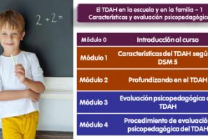 Módulos Curso on line Evaluación psicopedagógica del TDAH